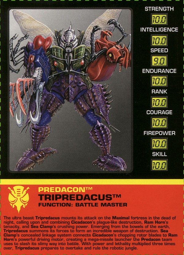 Transformers Tech Spec: Cicadacon